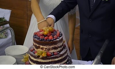 Detail of wedding cake cutting by newlyweds/Wedding cake