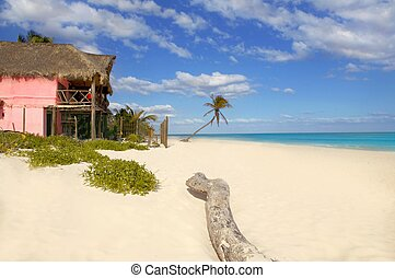 Caribbean sand beach tropical houses in Mexico