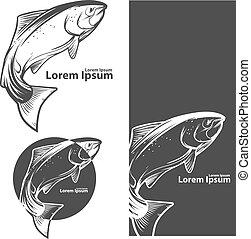 logotipo, peixe, salmão