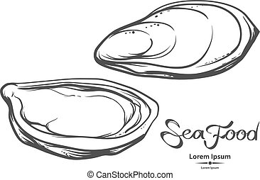 sea food image - oysters, sea food, illustration, for menu,...