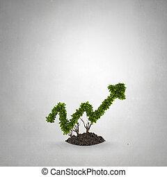 Crecimiento, su, ingresos
