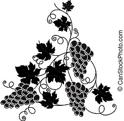 Grape branch with bunch of grapes and leaves. - Vector black...