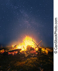 Campfire in the night