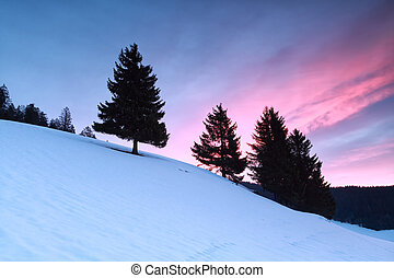 purple sunrise in winter mountains, Todtnauberg, Germany