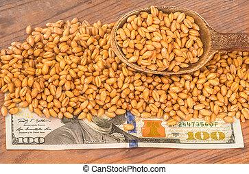 Wheat grains on dollar bills - Golden ripe organic wheat on...