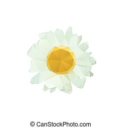 Polygon chamomile bud on a white background.