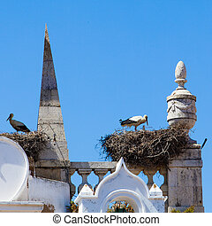 Crane bird in the nest on the church in Arc of Vila on the...