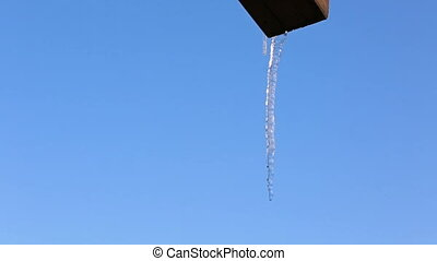 Single icicle hanging down - Close up of single clear thick...