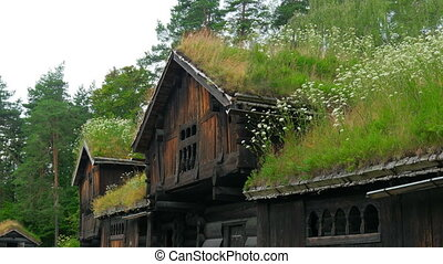 quot;beautiful norwagian village houses with green grass...