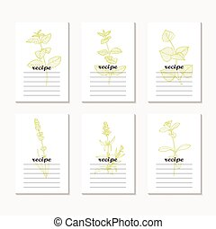 Recipe cards collection with hand drawn spicy herbs....