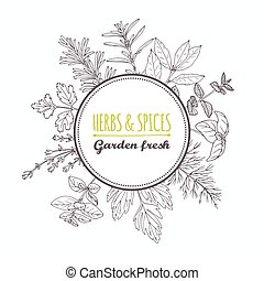 Circle label with hand drawn herbs and spices. Outline style...