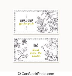 Business card templates set with hand drawn spicy herbs....