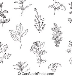 Seamless pattern with hand drawn spicy herbs. Monochrome...
