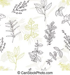 Seamless pattern with hand drawn spicy herbs. Culinary...