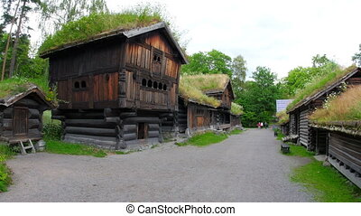"""people at norwagian village houses with green grass..."