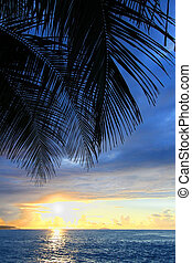 Caribbean Island Puerto Rico