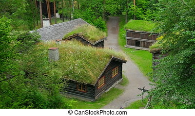 """beautiful norwagian village houses with green grass..."