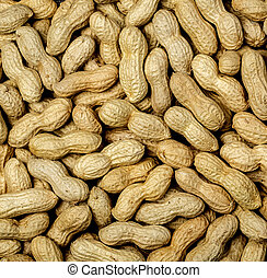 Boil peanut texture close up background