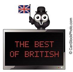The Best of British - Best of British with businessman bird...