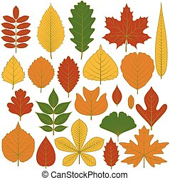 Set of tree leaves. Twenty different icons. Various elements...