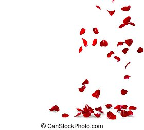 Rose petals fall to the floor. Isolated background. 3D...