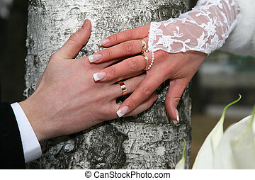 bride and groom show their hands wearing wedding rings