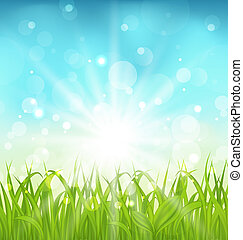 Spring nature background with grass - Illustration spring...