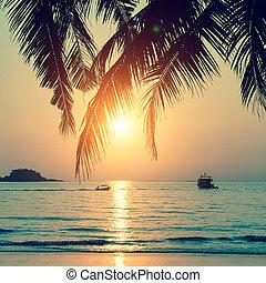 Tropical beach during a beautiful