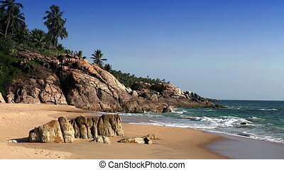 The seashore with stones and palm trees India Kerala