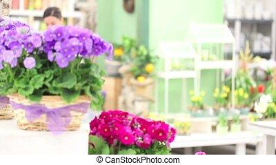 garden springtime woman