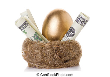 golden egg in a nest with money