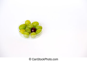Red and green grapes - GMO are living organisms whose...