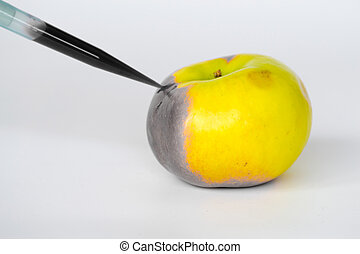 Corrupting apples - GMO are living organisms whose genetic...