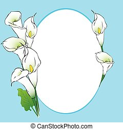 Calla background frame - Frame background with calla flowers