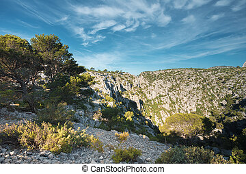 Beautiful nature of Calanques on the azure coast of France...