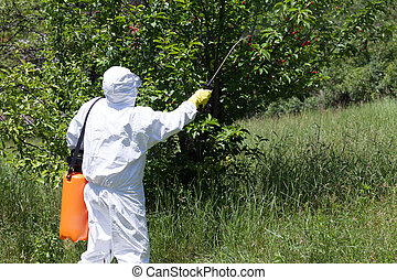 Spraying a fruit orchard - Pesticide spraying