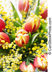 Spring flowers - Bright spring bouquet of tulips and mimosa...