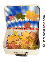 Vintage suitcase with autumn leaves