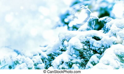 Snow-covered branch zoom out motion background