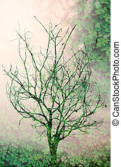 Tree Branches with clover in background, double exposure.