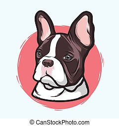 French Bulldog - Closeup Portrait of the Domestic Dog French...