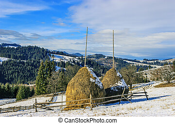 Rural landscape in the Carpathian Mountains