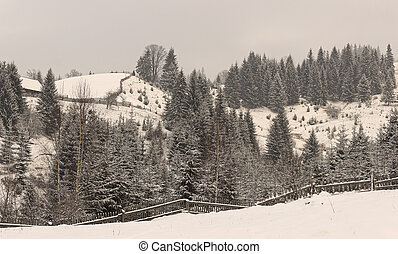 Winter rural landscape in the Carpathian mountains