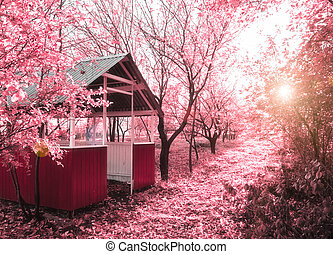 Pink spring infrared photo - Spring is coming