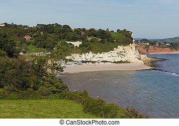 Elevated view of Beer beach Devon England UK English coastal...