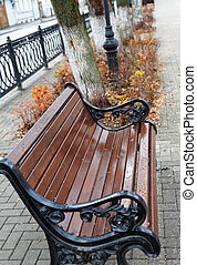 Brown bench in a city park in autumn
