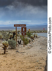 Cholla Gardens Sign - Cholla Gardens sign in a park in...