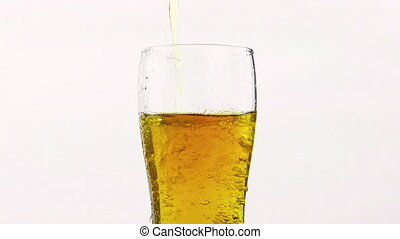 pouring fresh beer with foam into glass on white background,...