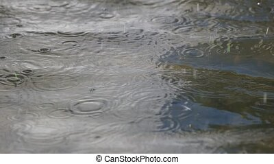 Rain drops fall on water surface - Rain drops falling on...
