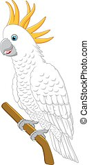 White parrot sitting - vector illustration of White parrot...